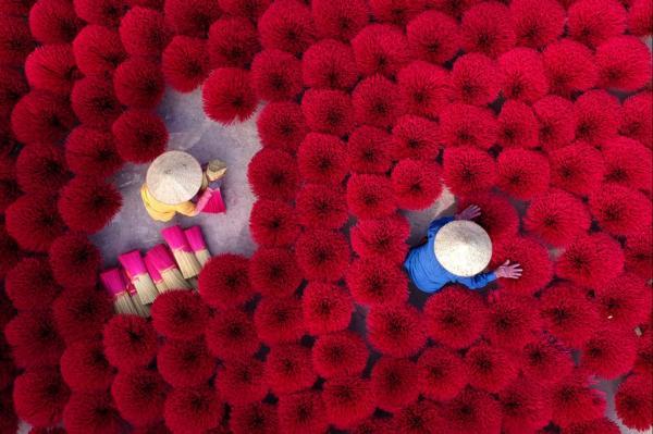 河内郊外的以制香闻名的广福求村,一名妇女正忙于整理农历新年祭拜(越南称Tet)所需的香。(图:法新社)