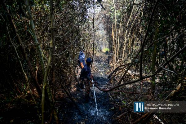 Anggota bomba cuba memadam kebakaran yang memusnahkan 50 hektar hutan di Kuala Langat, Selangor. – Gambar The Malaysian Insight oleh Hasnoor Hussain, 4 Mac, 2020.