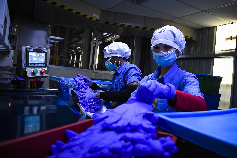 虽然手套业者已经转型,大刀阔库把生产过程自动化,但有些部分依然需要人手处理。(档案照:透视大马)