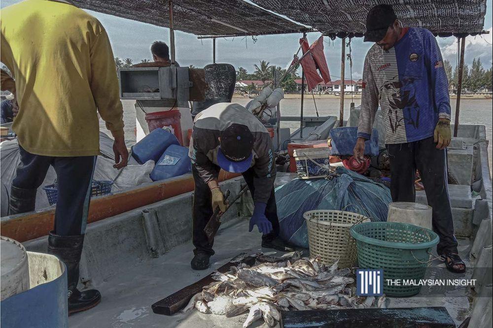 Nelayan yang baru pulang dari laut membawa hasil tangkapan ke Jeti Nelayan Kuala Muda, Kedah. Kebanyakan mereka sudah tidak menangkap ikan secara agresif seperti musim sebelum PKP. – Gambar The Malaysian Insight, 8 Oktober, 2020.