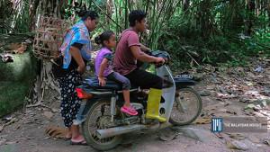 [WATCH] Uncontrolled development harms Orang Asli's livelihood