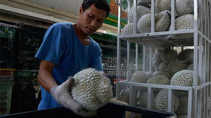 [WATCH] Frozen durian satisfy Malaysians craving for the king of fruit